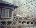 продам дом в селе Петруня